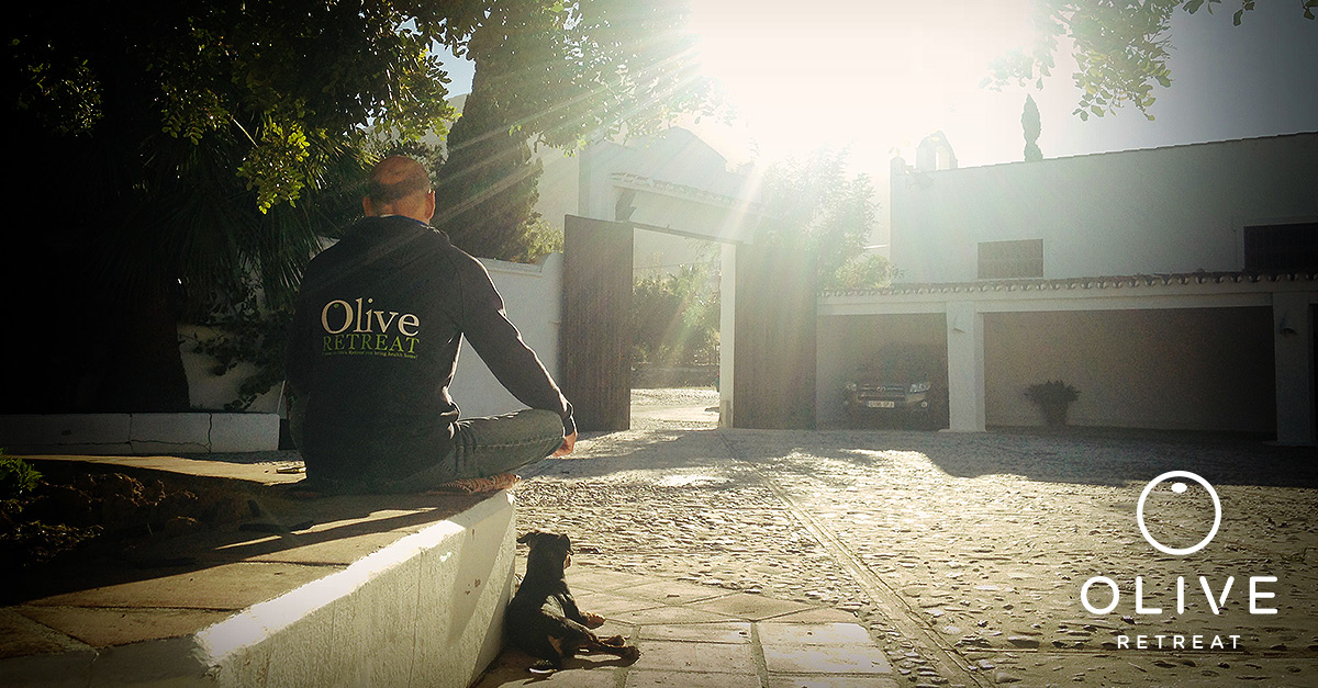 Olive Retreat Meditation Mindful Mind Detox Spain