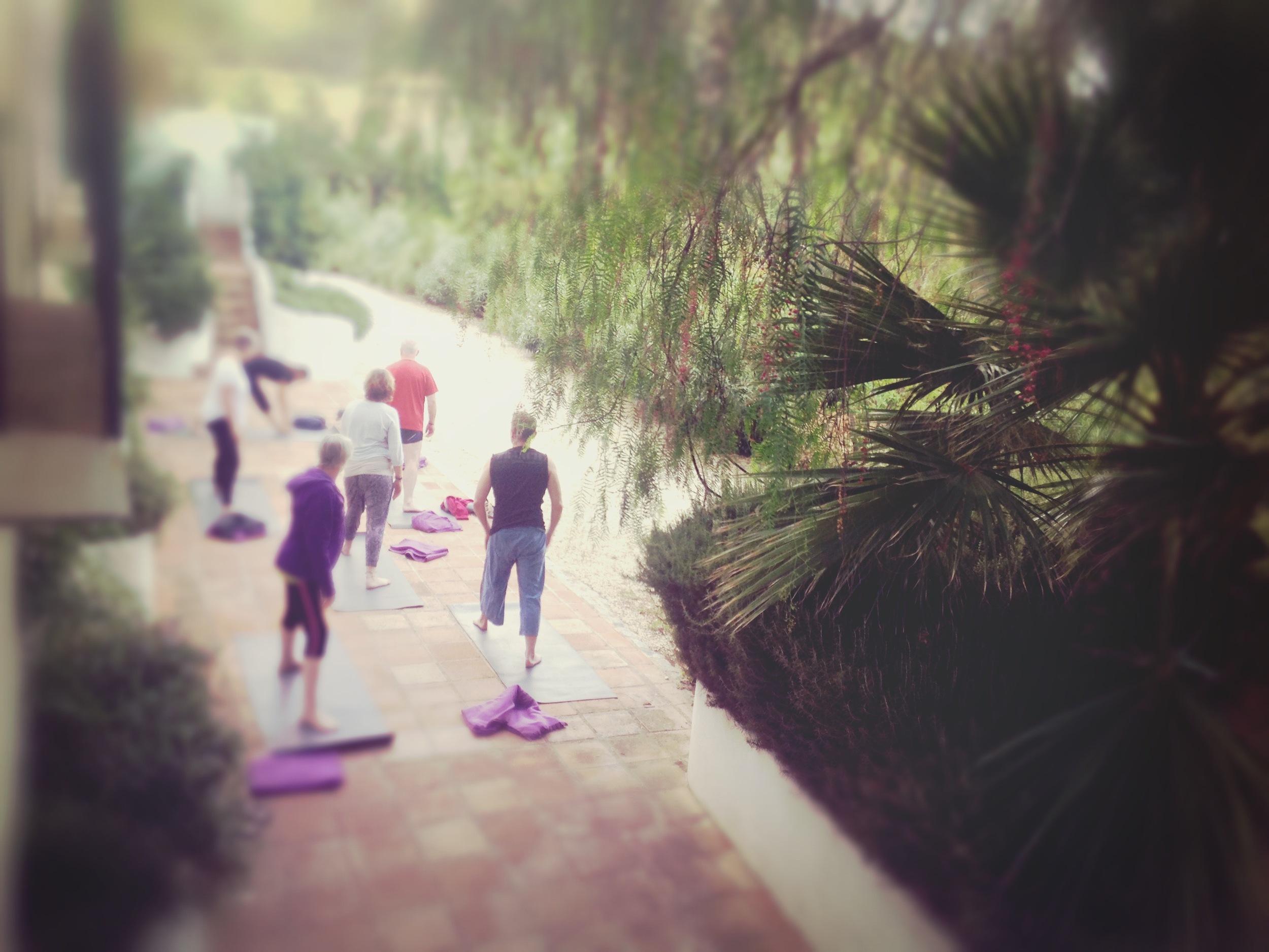 spain retreat olive retreat cleanse health massage.jpg