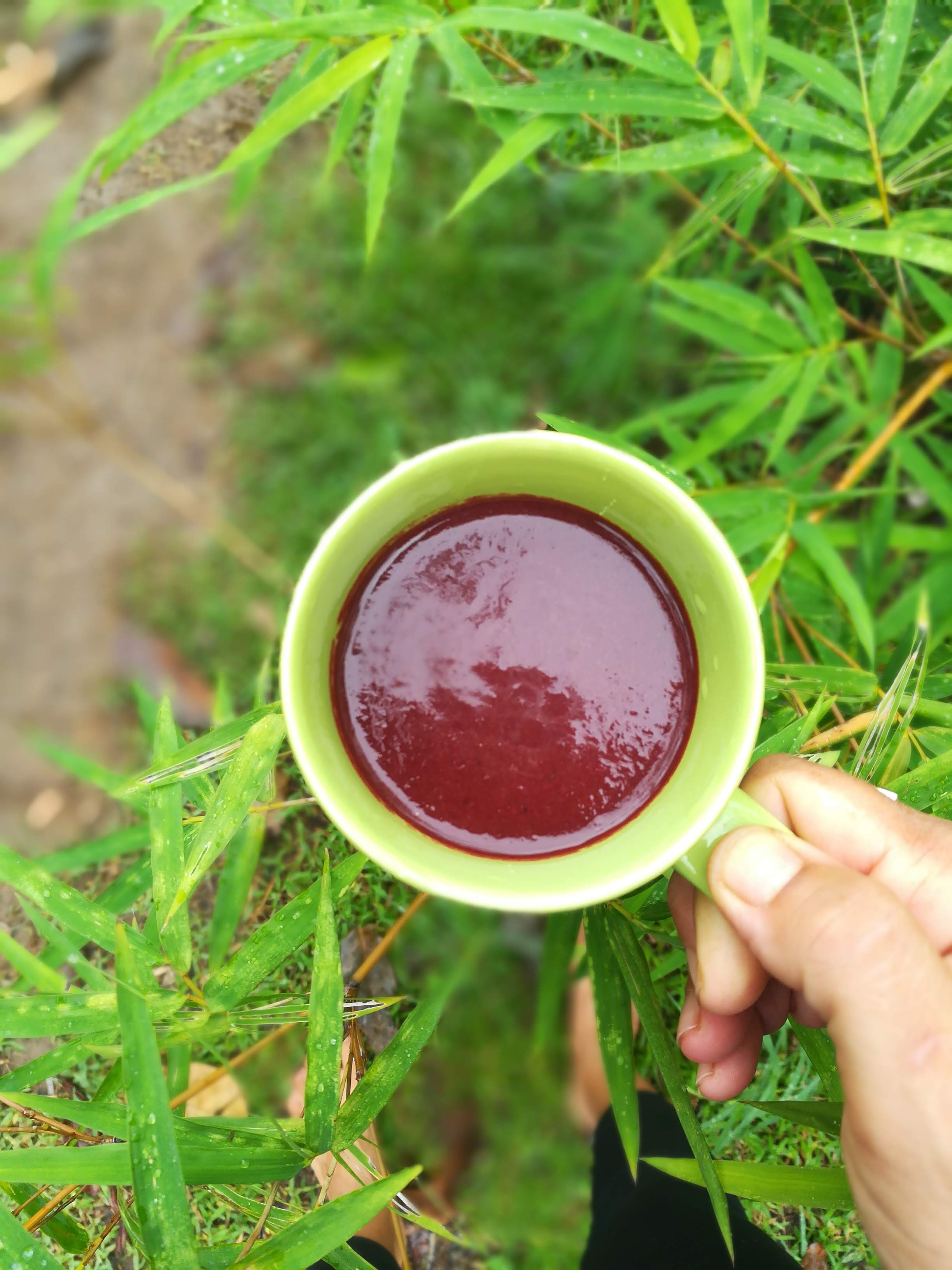 Olive retreat herbal drinks.jpg