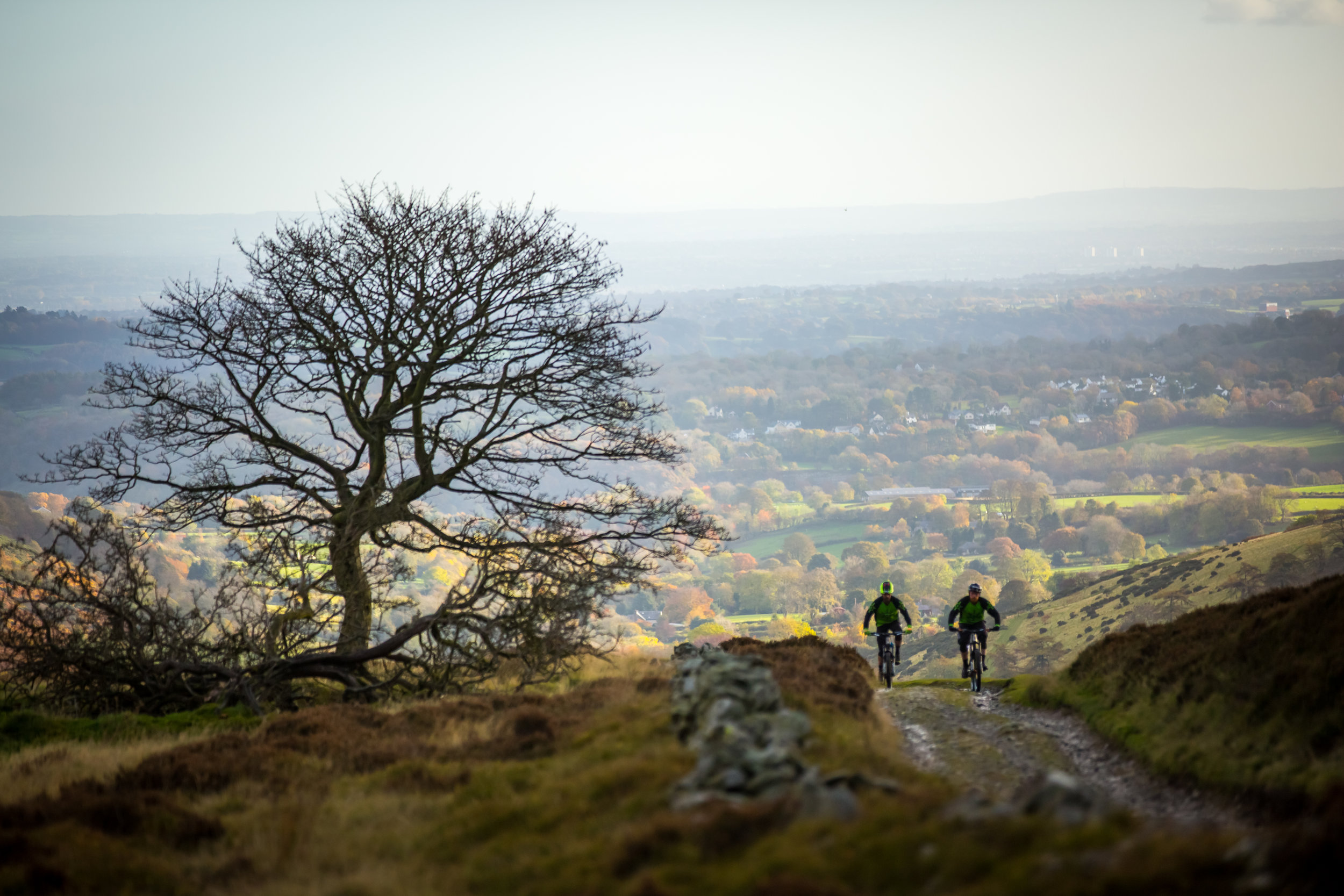 """""""Trails were running fast and with the new wheels, I managed a few   strava  PRs on trails I've done 50 plus times""""  Dean, Basingstoke"""