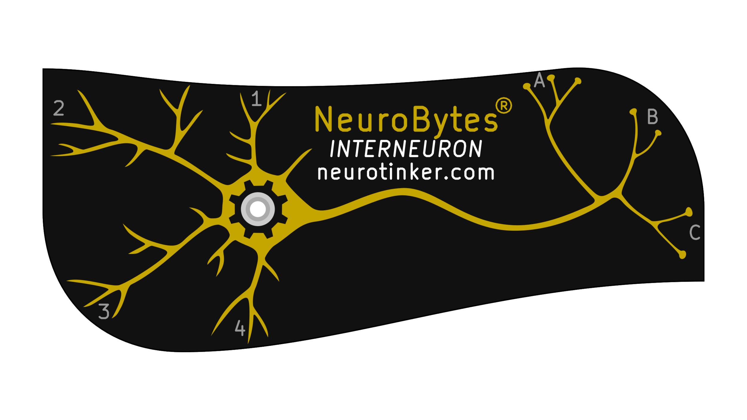 NeuroBytes_Interneuron.png