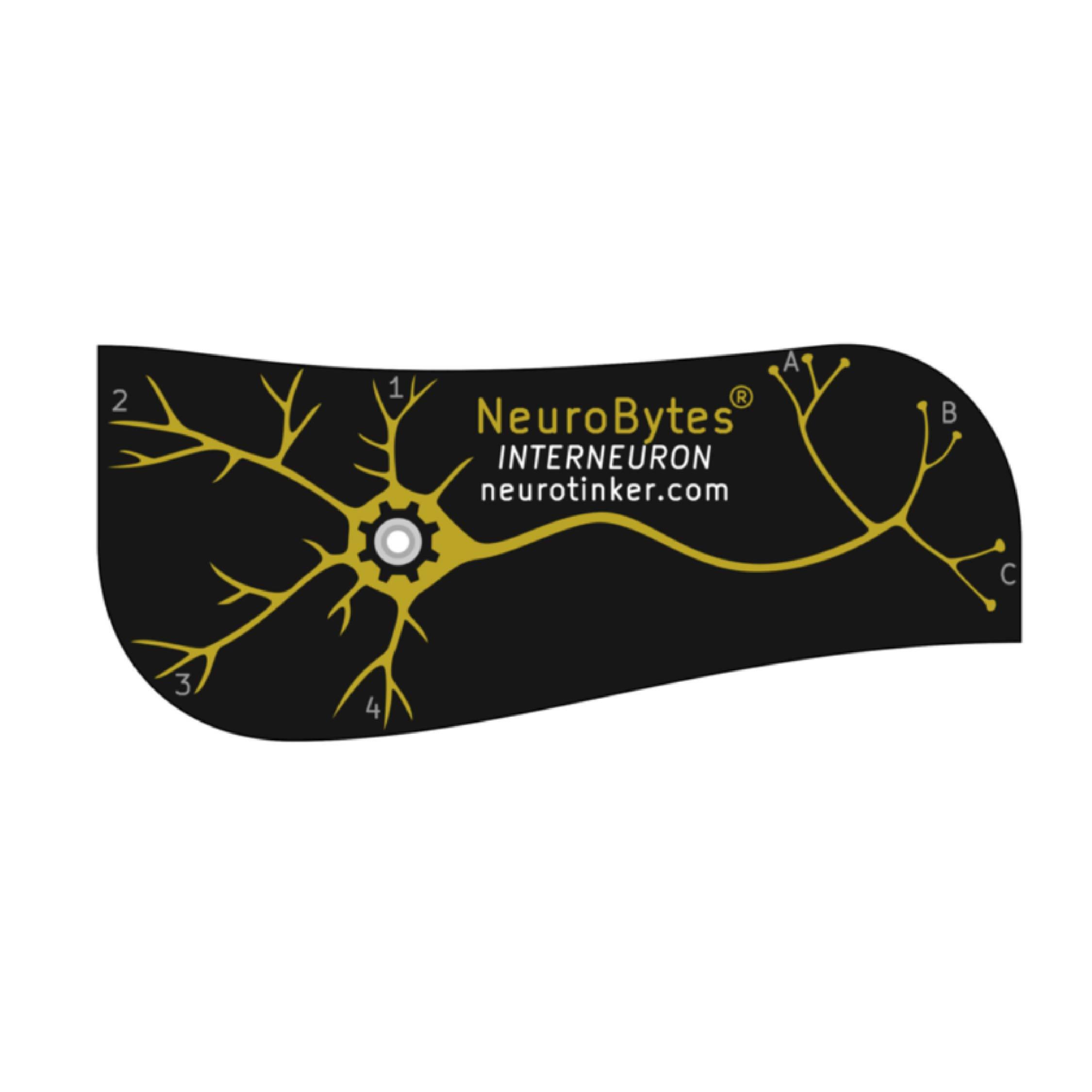neurobytes_interneuron.jpg