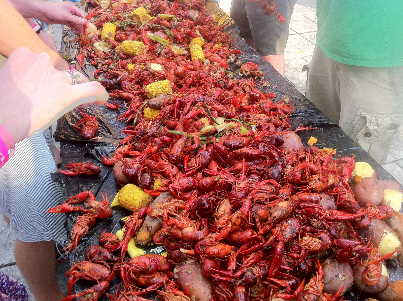 third row crawfish 2012.JPG