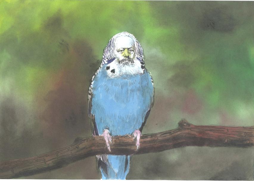 Imagem retirada da Internet (exposição realizada na galeria Luth, Alemanha)