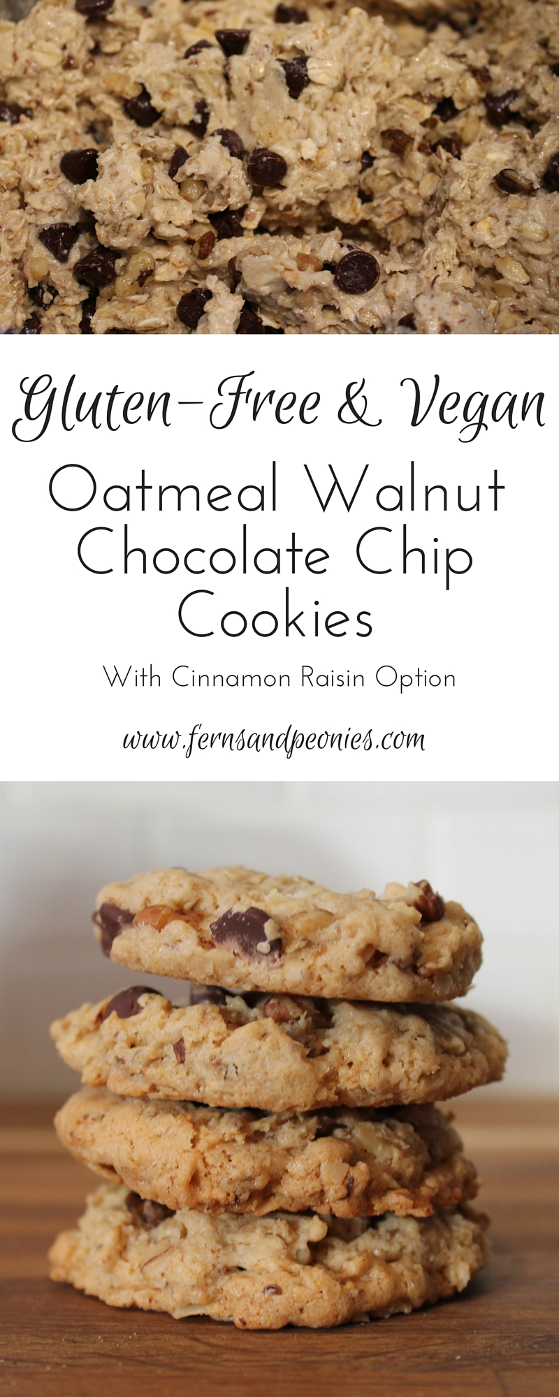 Oatmeal Walnut Chocolate Chip Cookies (GF,V) with Cinnamon Raisin Option. By www.fernsandpeonies.com