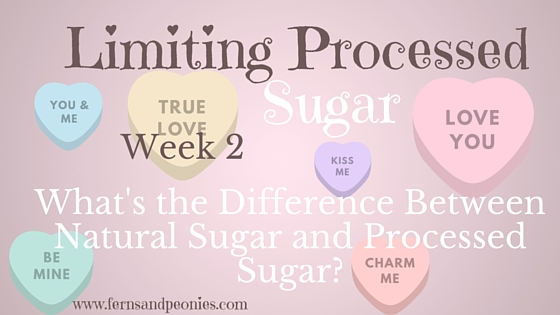 Limiting Processed Sugar Week 2: The difference between natural and processed sugar. And a raw mocha bite recipe to fill the void. www.fernsandpeonies.com