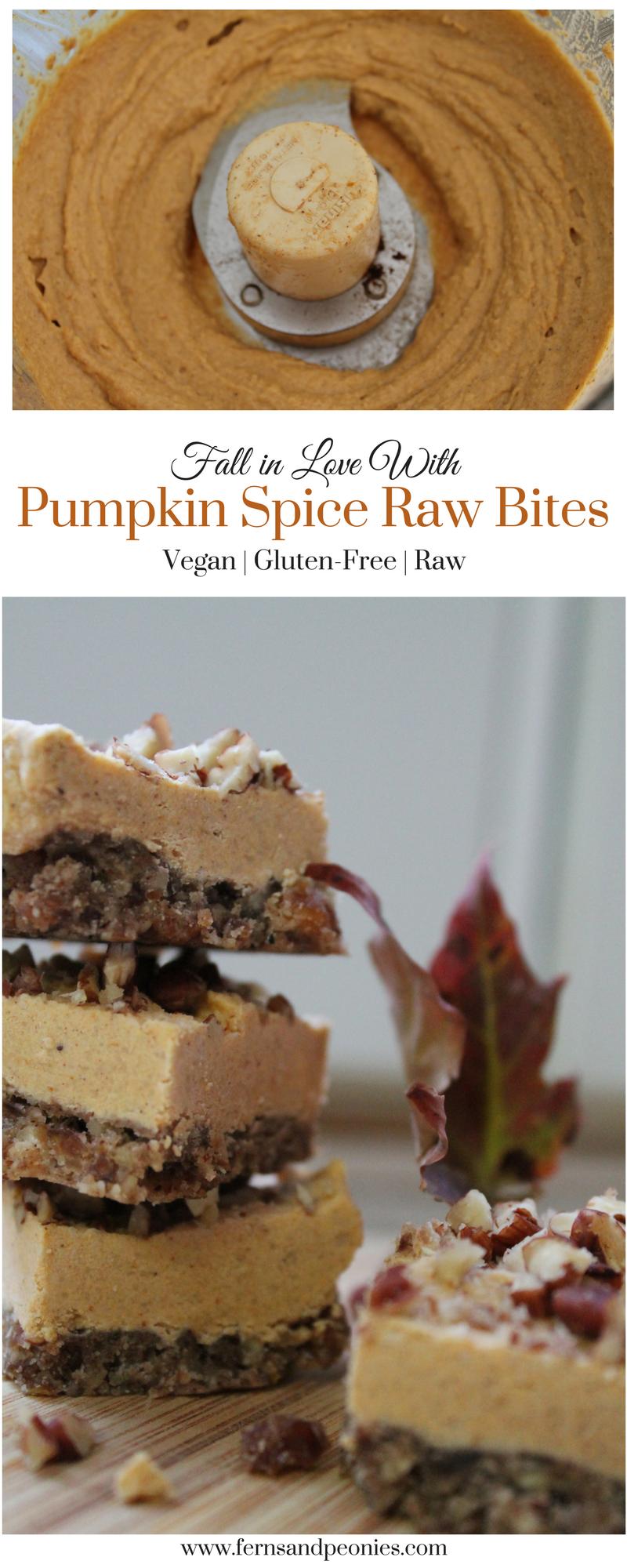 Pumpkin Spice Raw Bites from www.fernsandpeonies.com
