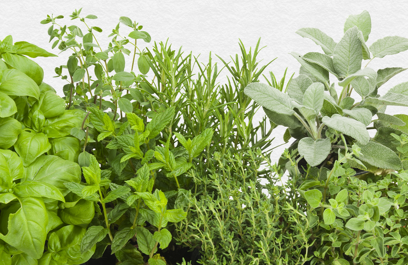 Herb Mix Small.png