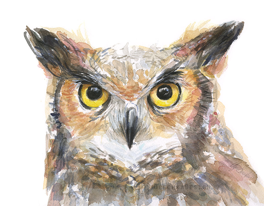 owl-watercolor-whitebckg.jpg