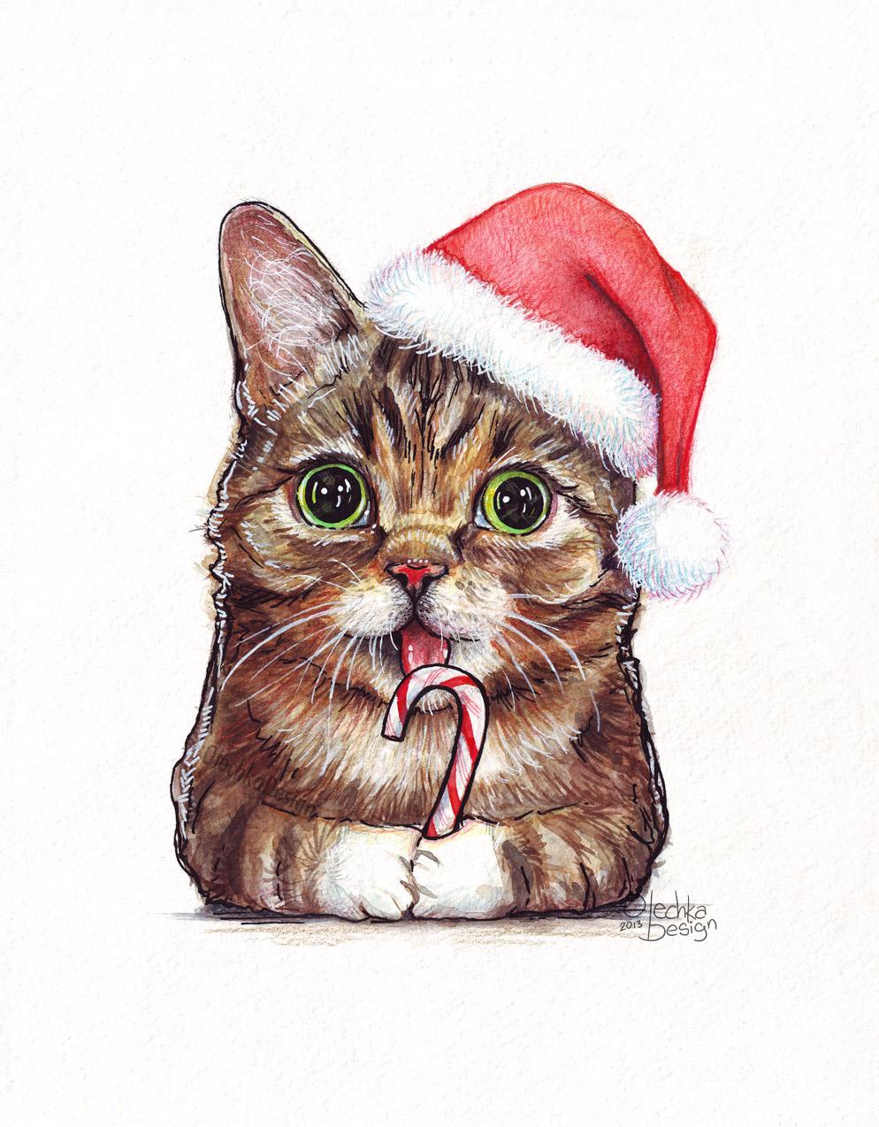 Lil-Bub-Santa_Christmas.jpg