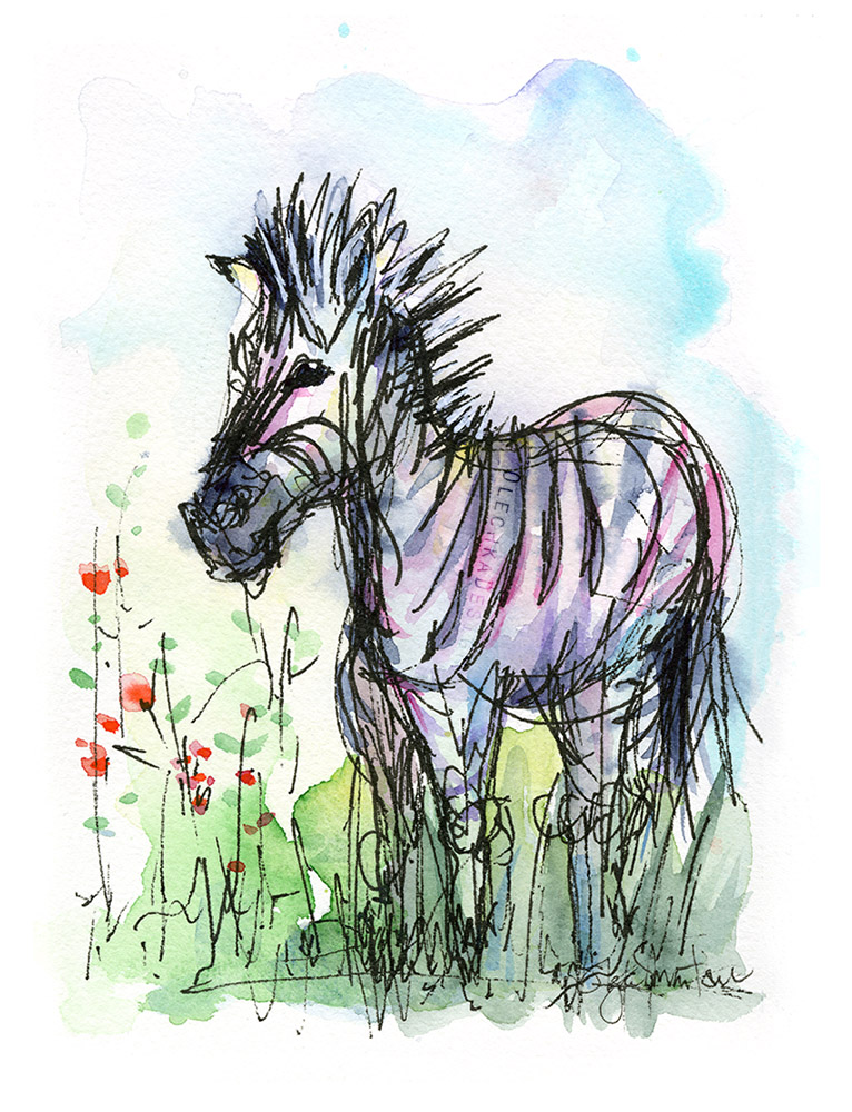 Zebra-Sketch-watercolor.jpg