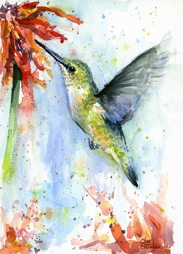 Hummingbird-red-flower-watercolor-OlechkaDesign.jpg