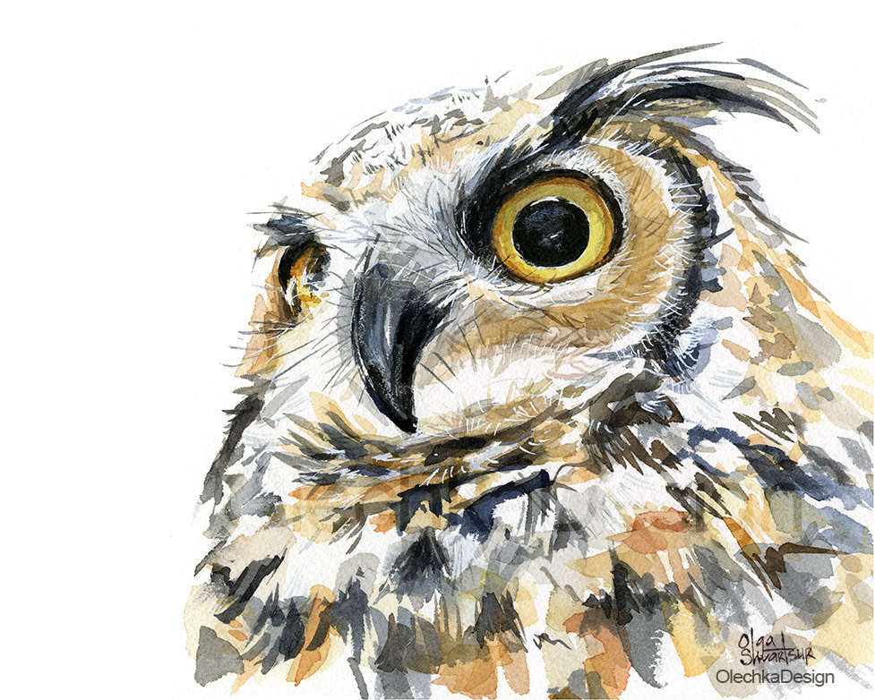 great horned owl watercolor