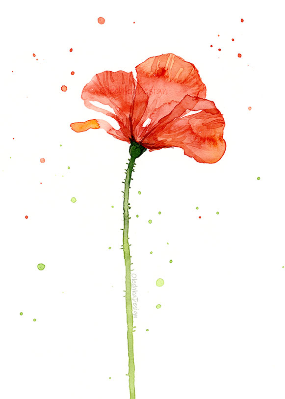 poppy-flower-painting.jpg