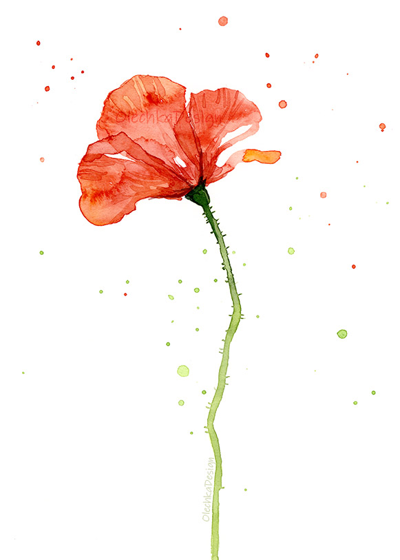 poppy-red-watercolor-painting.jpg