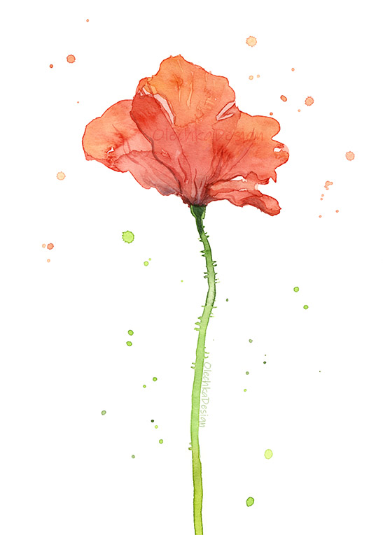 poppy-flower-red-watercolor.jpg