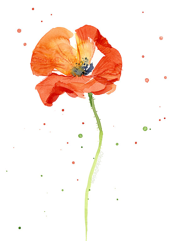poppy-painting-watercolor.jpg