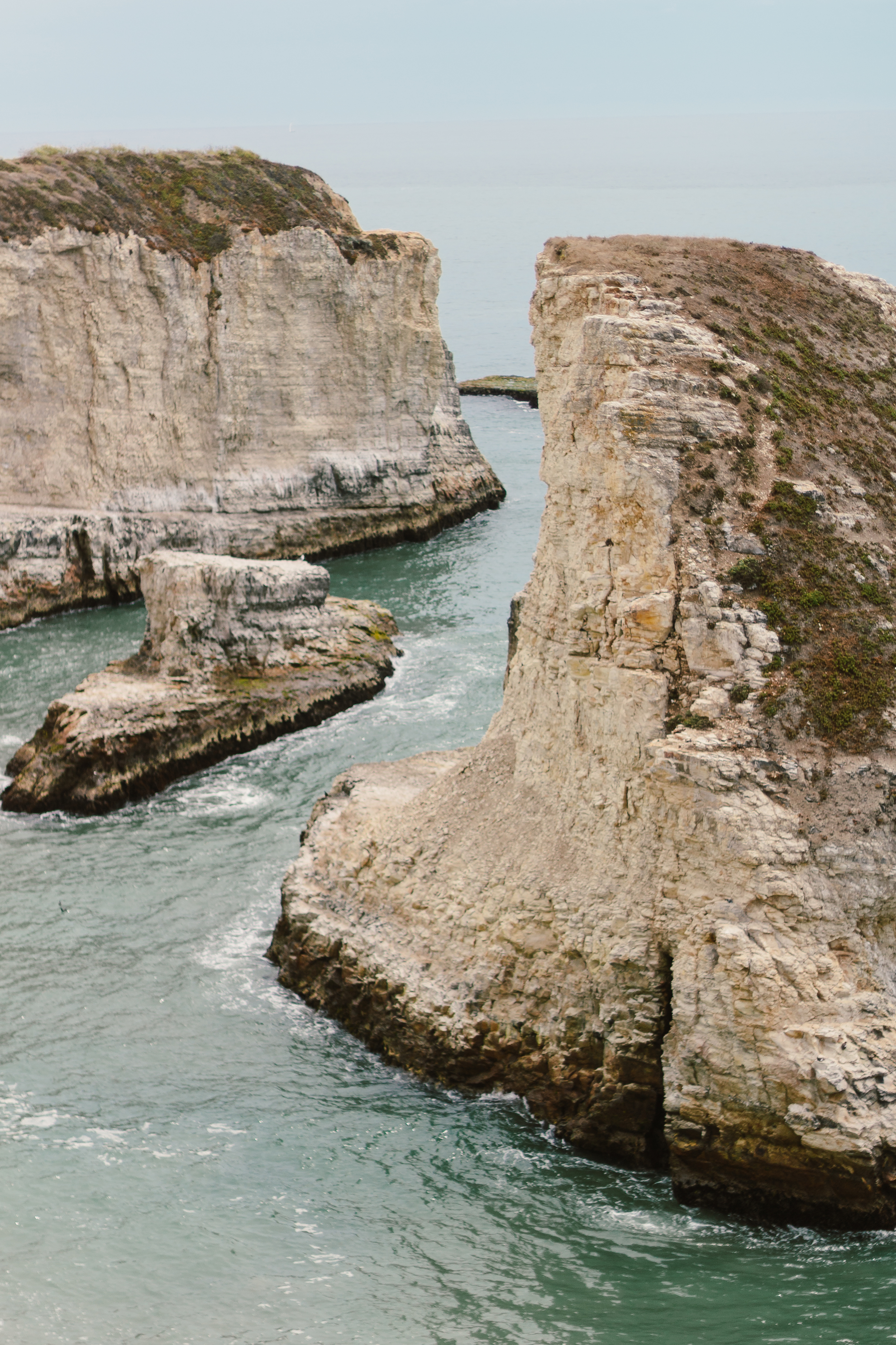 Shark Fin Cove by Catherine Alyce