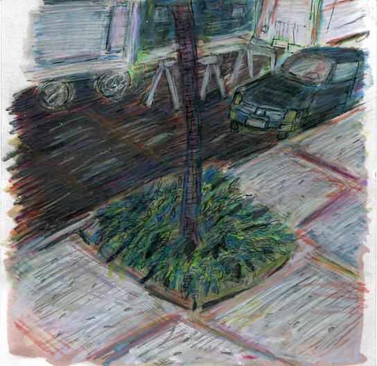 tree and car-web.jpg