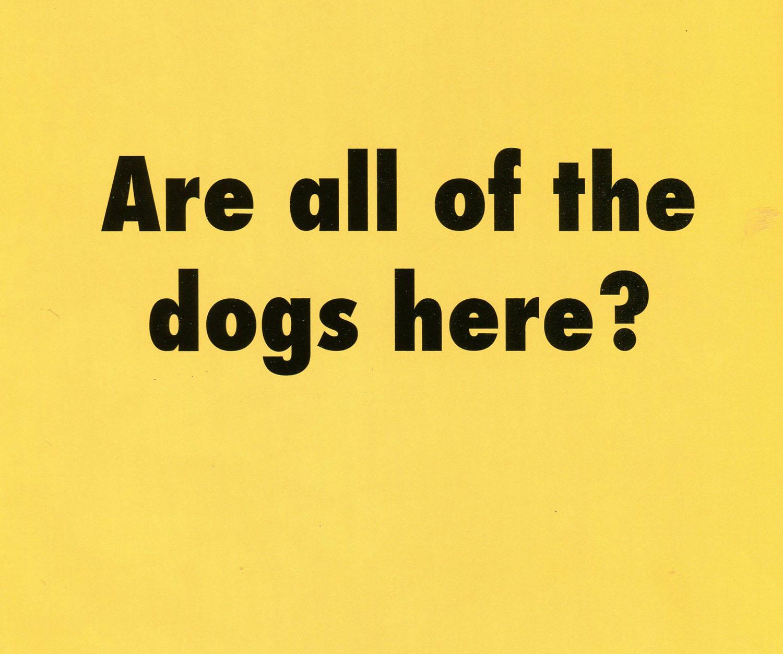 yellow dogs here056.jpg