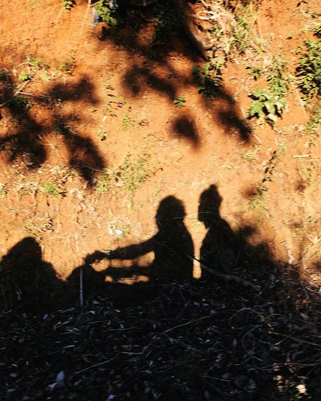 Quad ride through the beautiful Nosara countryside to visit a family-run coffee farm.