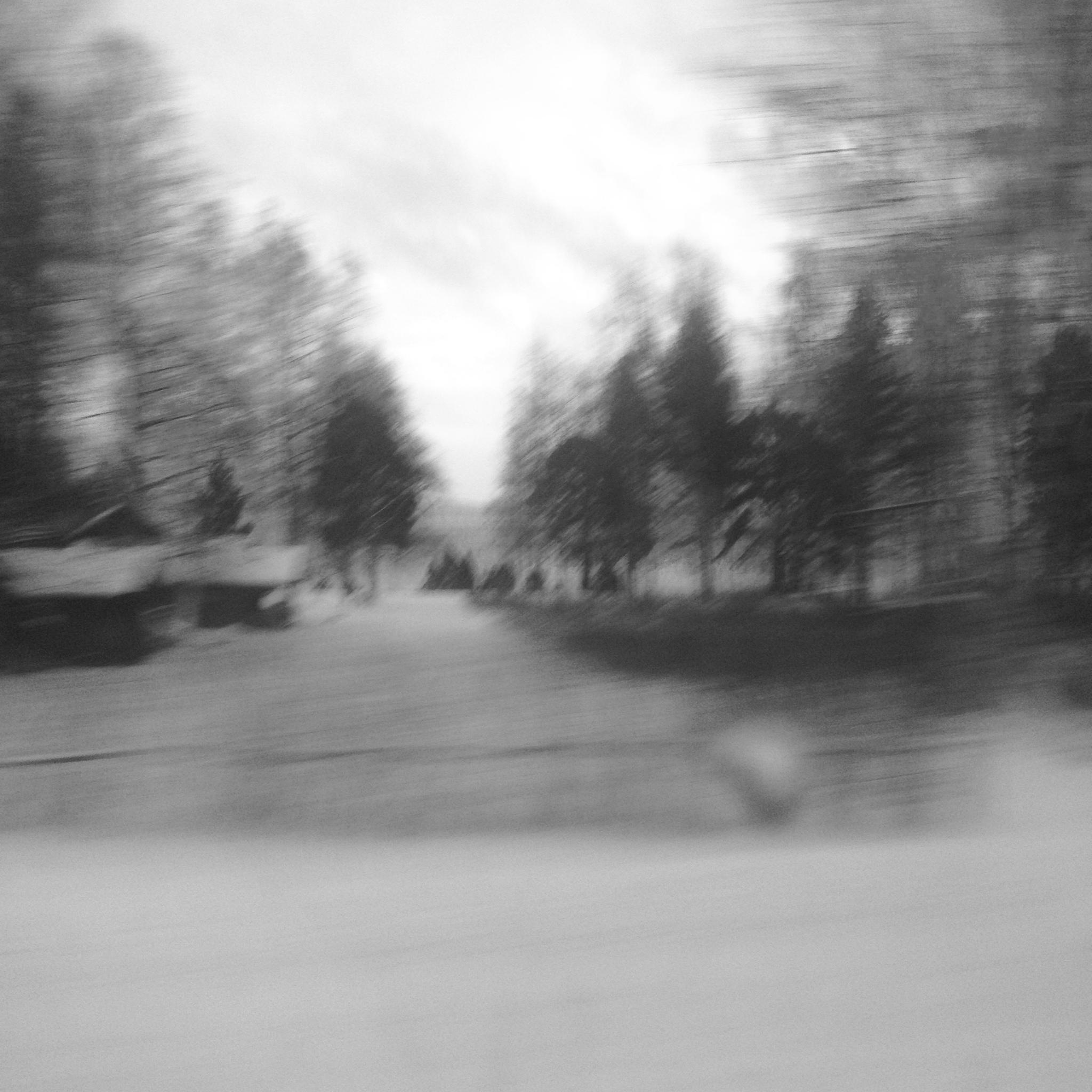 swedish train ride 2.JPG