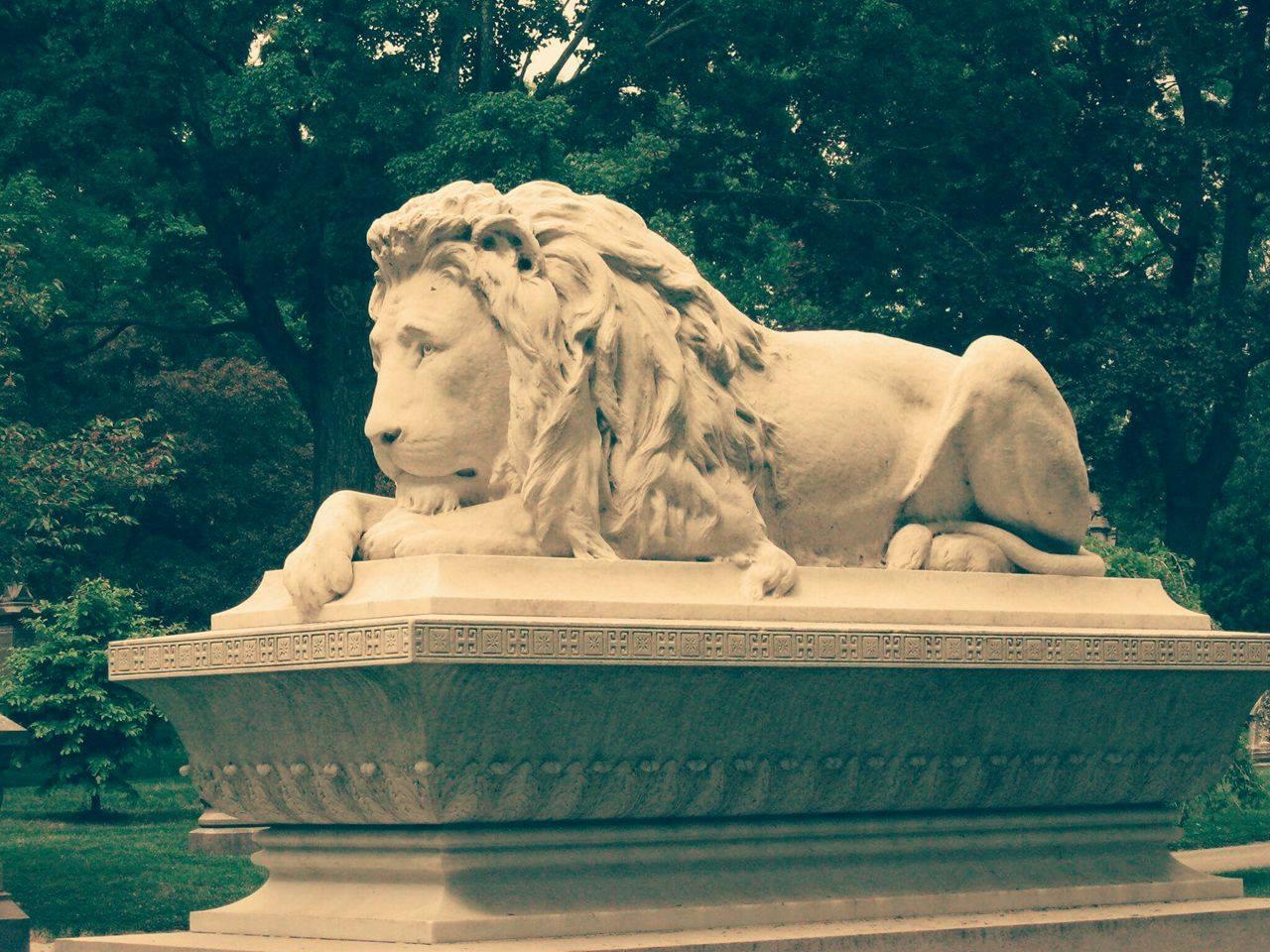 AYER LION 2.jpg
