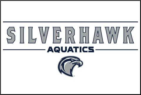 SilverHawk.jpg