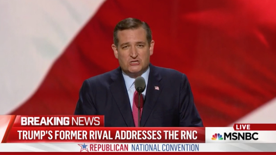 This is the face Ted Cruz makes when he's screwing you over.