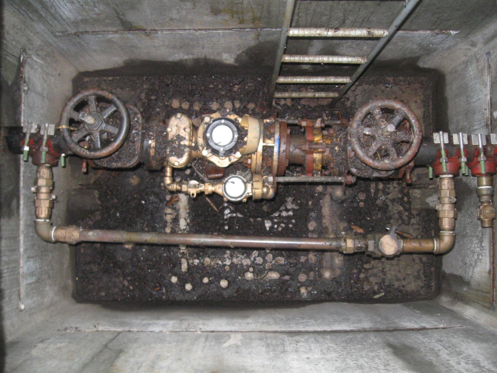Bellevue Water Meter Replacement-Bellevue, WA