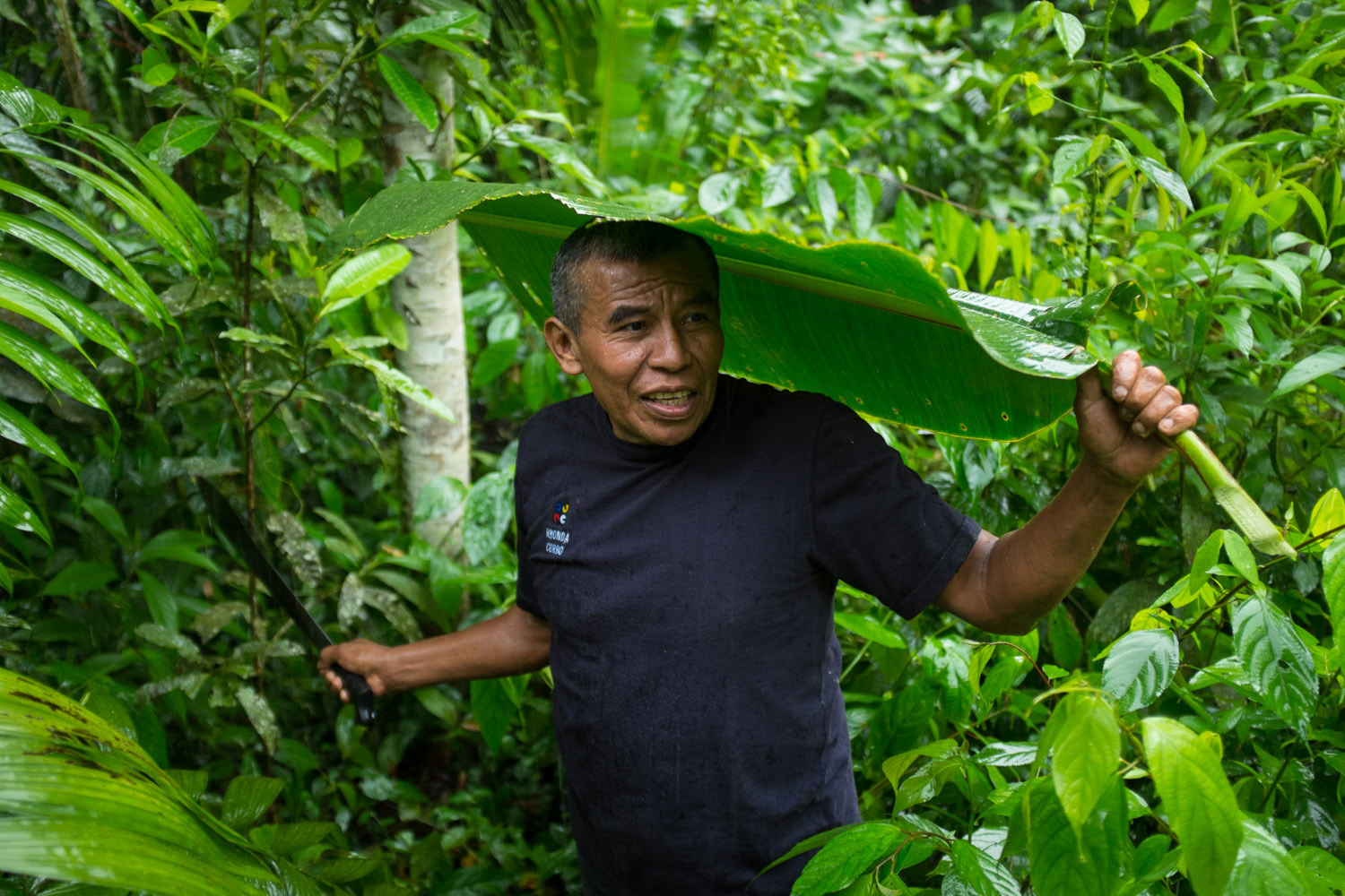 Eladio Pop shields himself from a downpour with a banana leaf, on his farm in Toledo District, Belize.