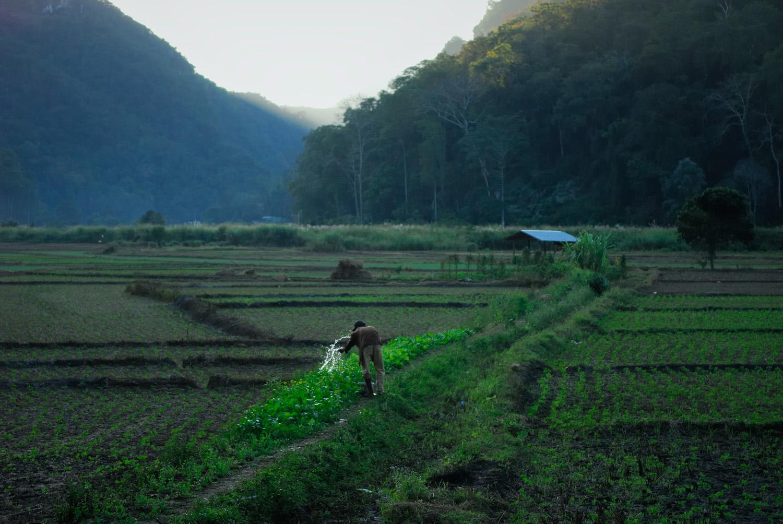 Watering fields, Mae Hong Son, Thailand