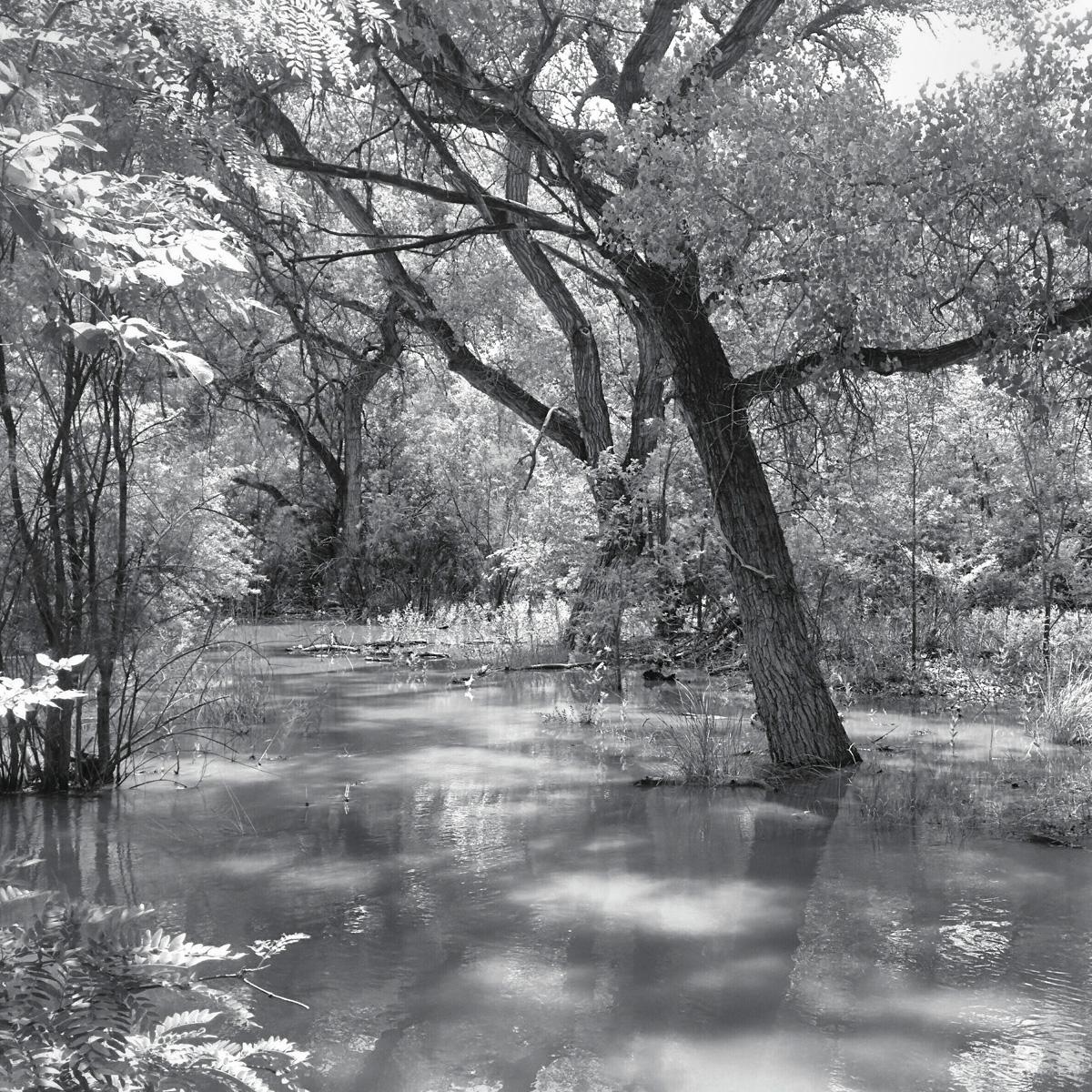 Rio Grande 11.jpg