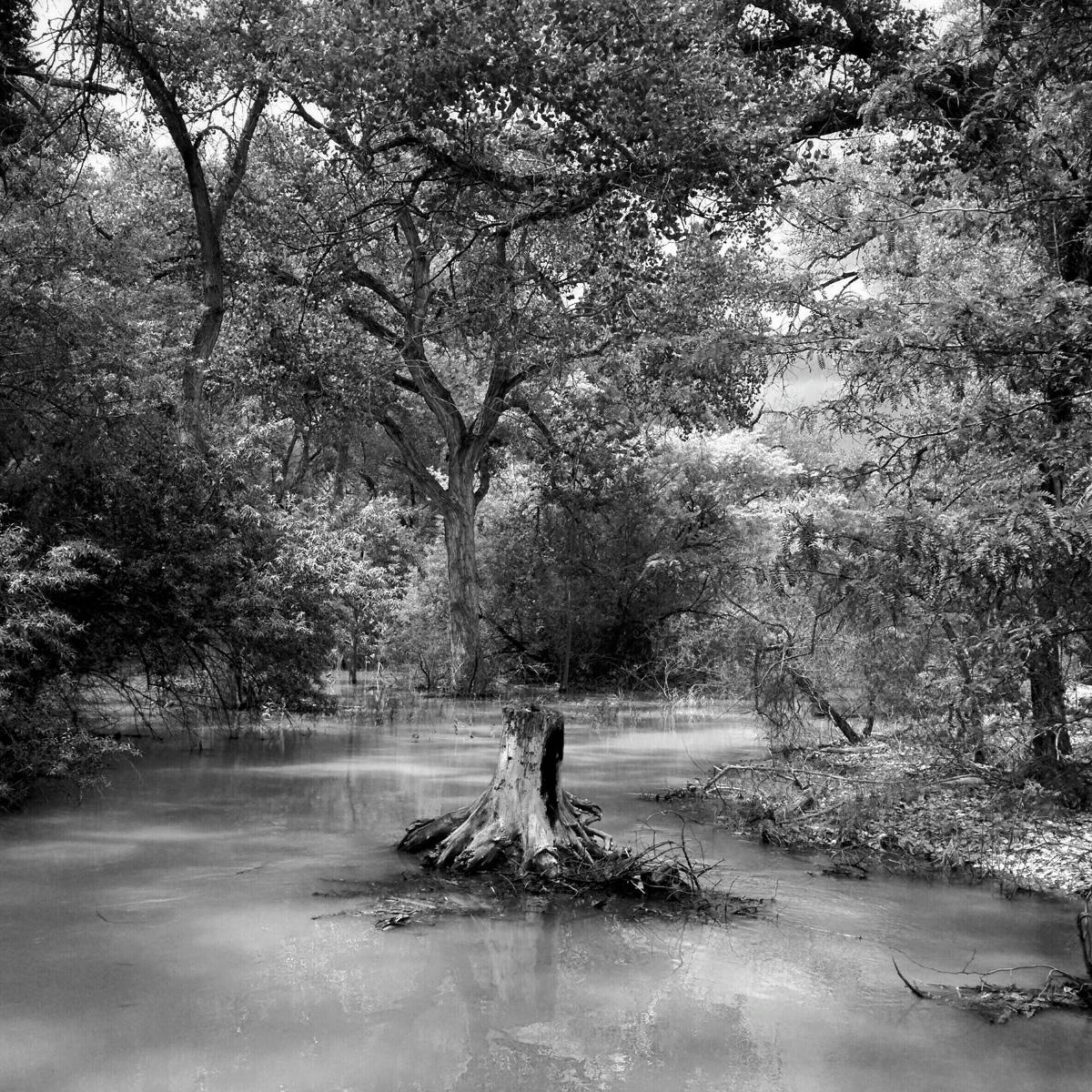 Rio Grande 12.jpg