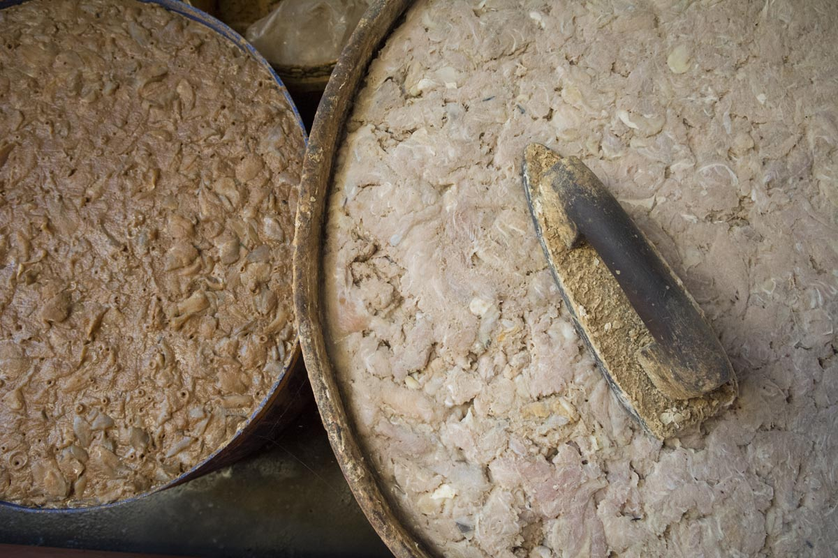 At left, pha ork, and at right prahok in their fermentation vats at a fish processing factory outside Battambang, Cambodia. Prahok is made from only fish and salt, while pha ork also has rice or rice husks as a fermentation catalyst.