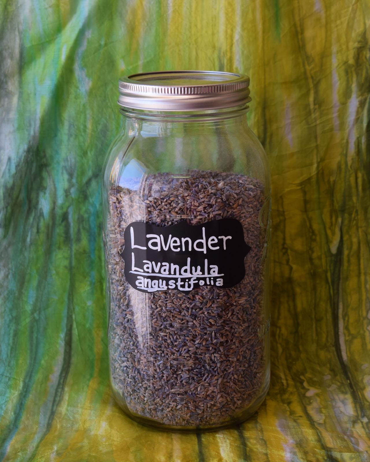 Lavender*