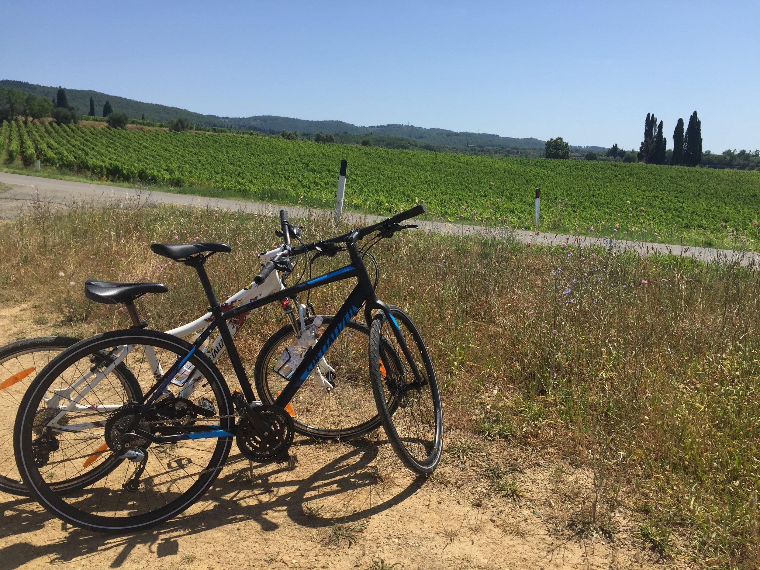 Biking in chianti