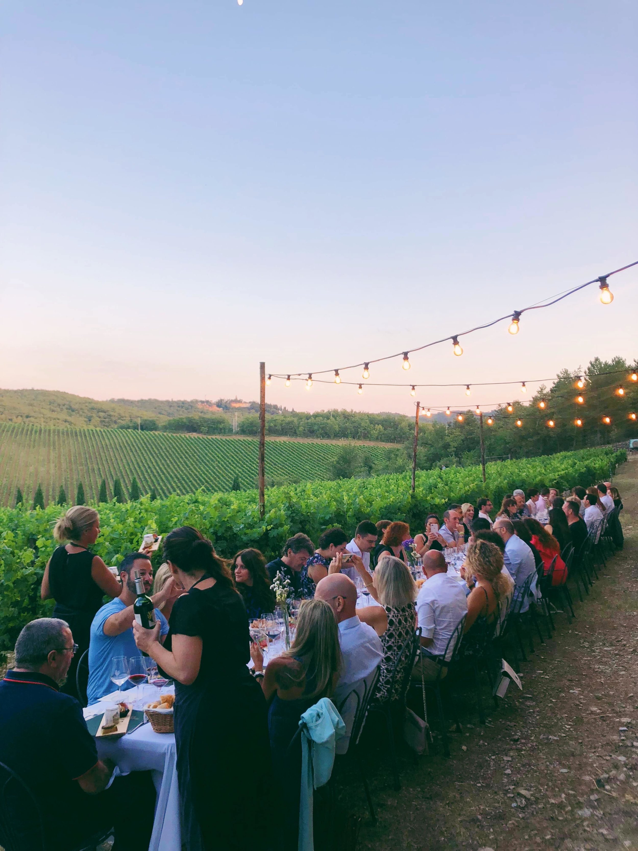 Dinner in the Vines - Summer 2018 - Tuscany