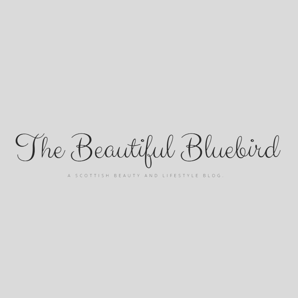the beautiful bluebird
