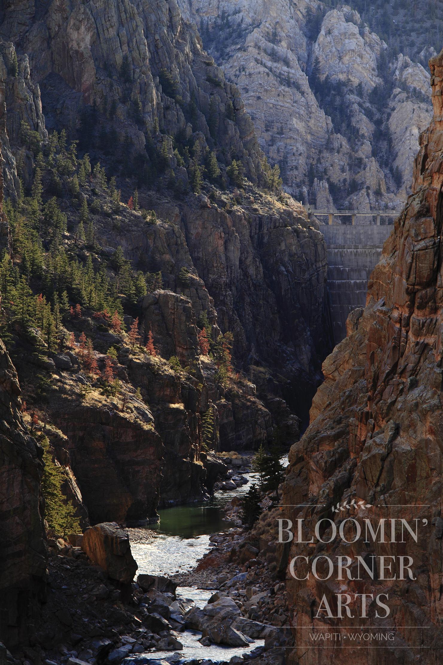 Shoshone Canyon Splendor 150 DPI .jpg