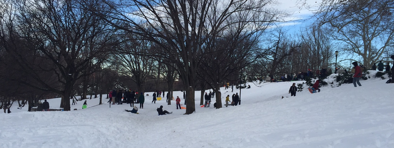 Sledders gathered on the snow-covered Monument steps.