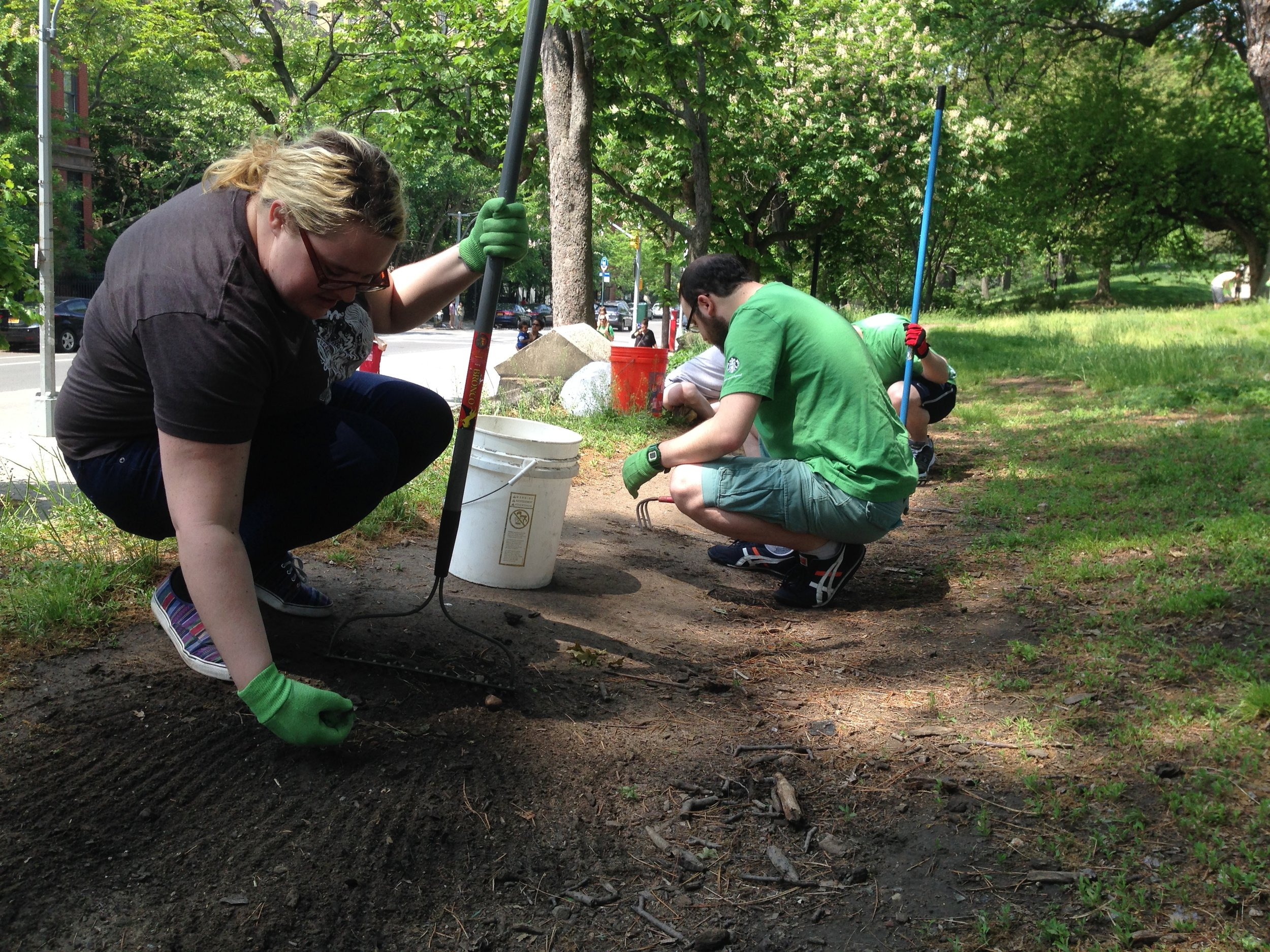 A handful of volunteers worked hard over many years to collect glass and make the park safer.