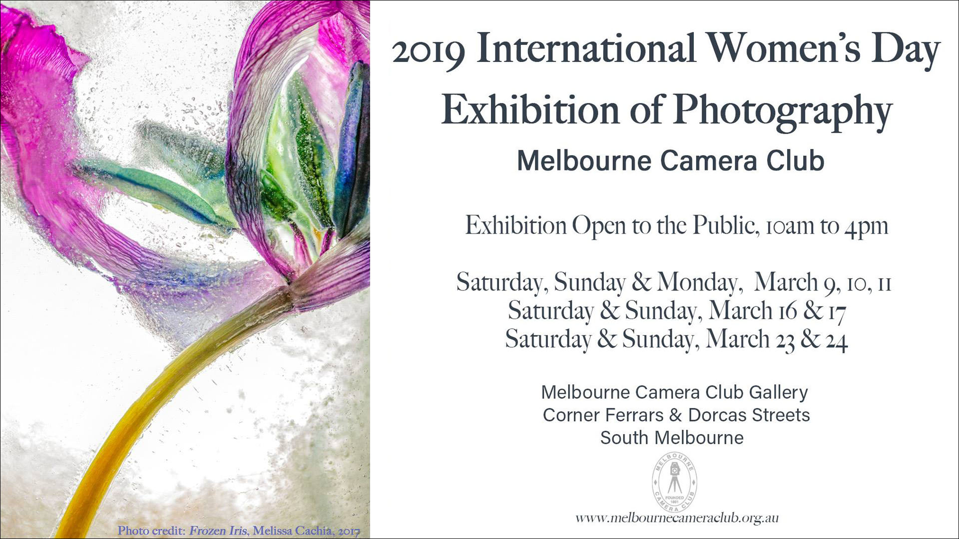 MCC IWD Group Exhibition.jpg