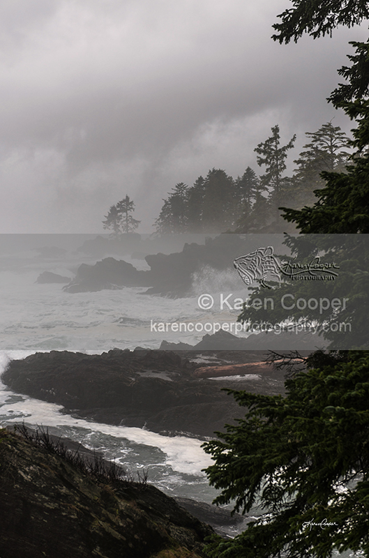 West Coast Storm