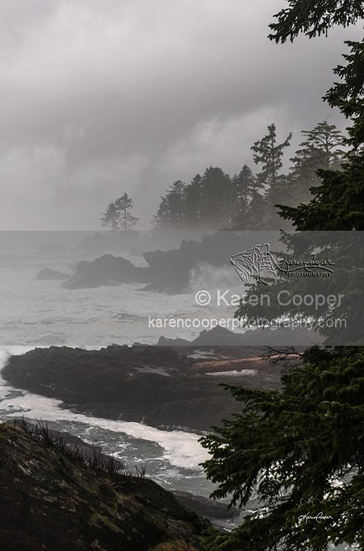 """West Coast Storm"""