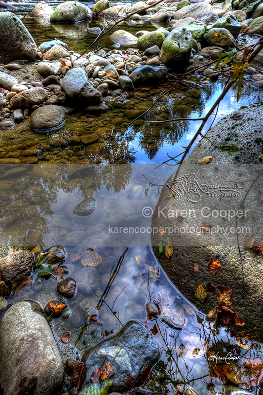 """""""River Reflection #1"""""""