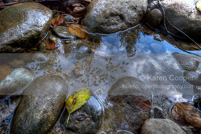 """""""River Reflection #2"""""""