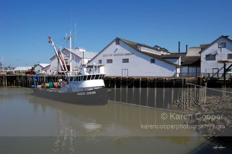 """""""Steveston Docks"""""""