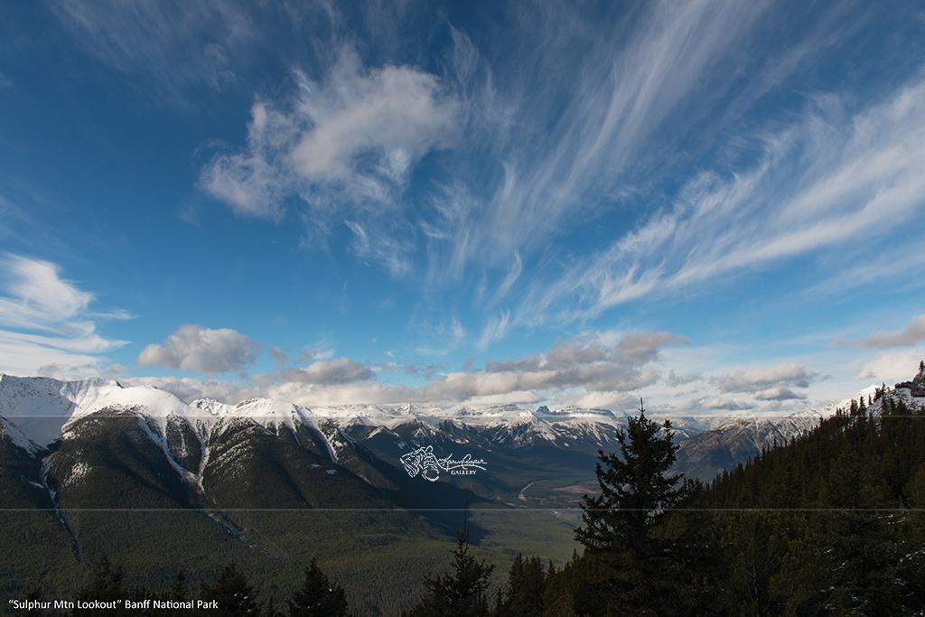 """Sulpher Mtn Lookout"" Banff National Park"