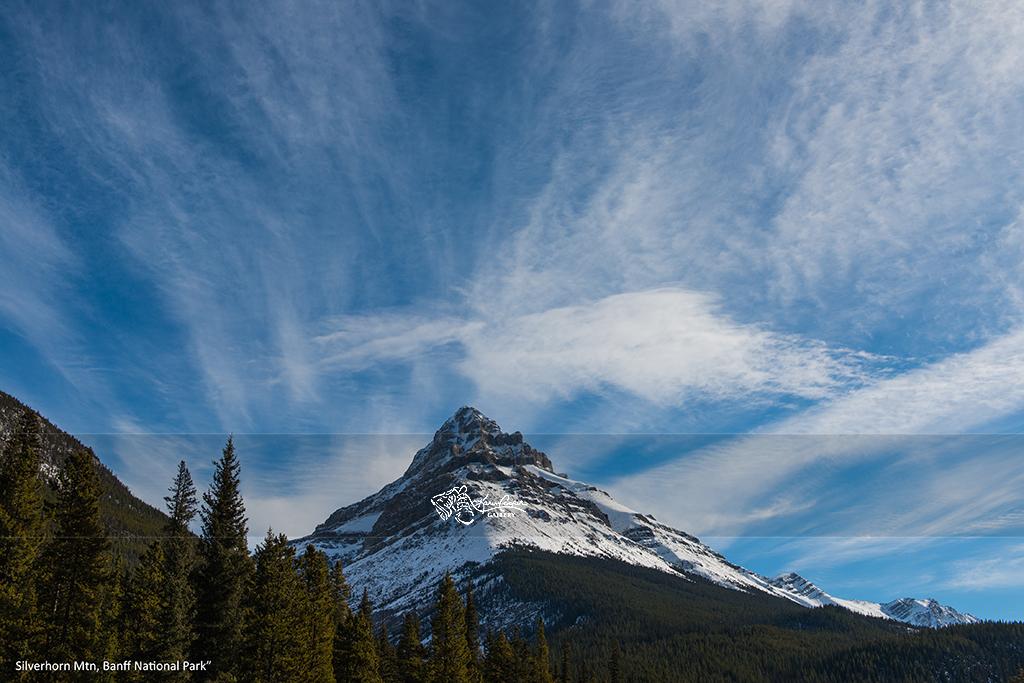 """""""Silverhorn Mountain"""" Banff National Park"""